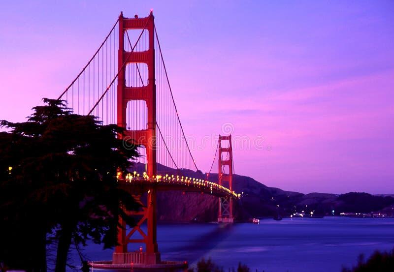 освещенное золотистое строба моста стоковое изображение
