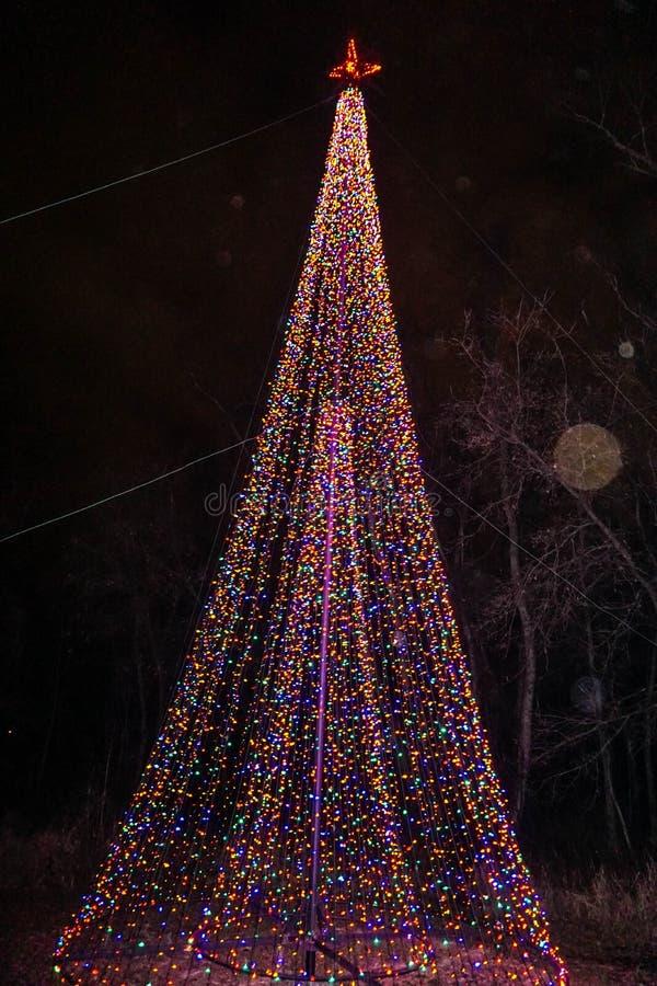 2 освещенных рождественской елки, одна внутренность другое стоковое фото