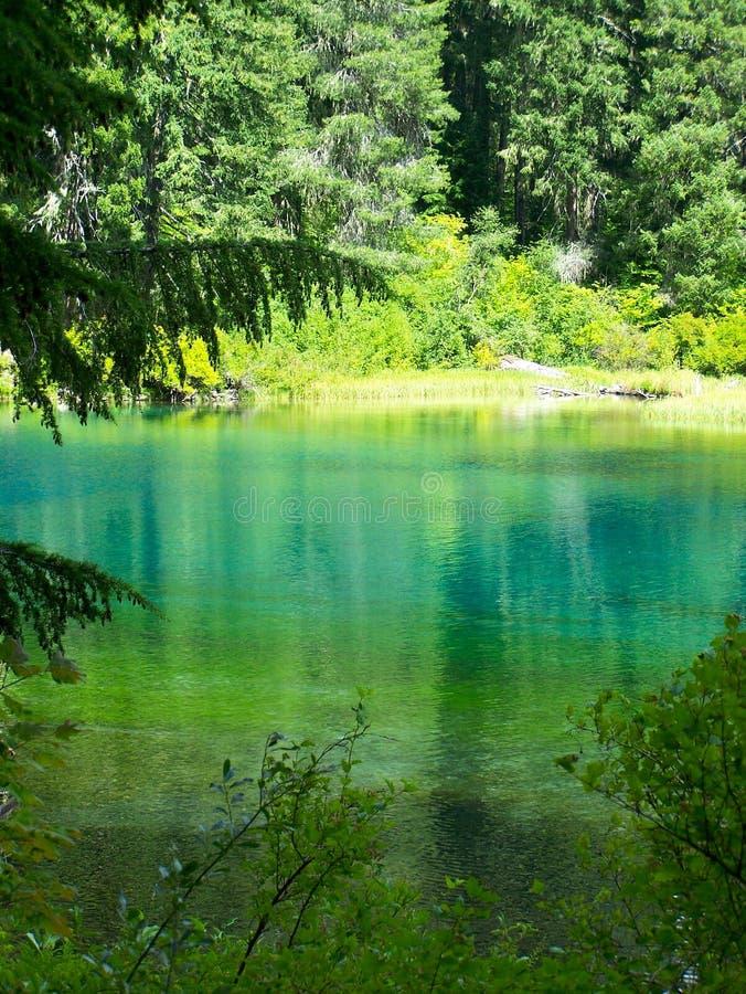 освободите озеро Орегон стоковые фотографии rf