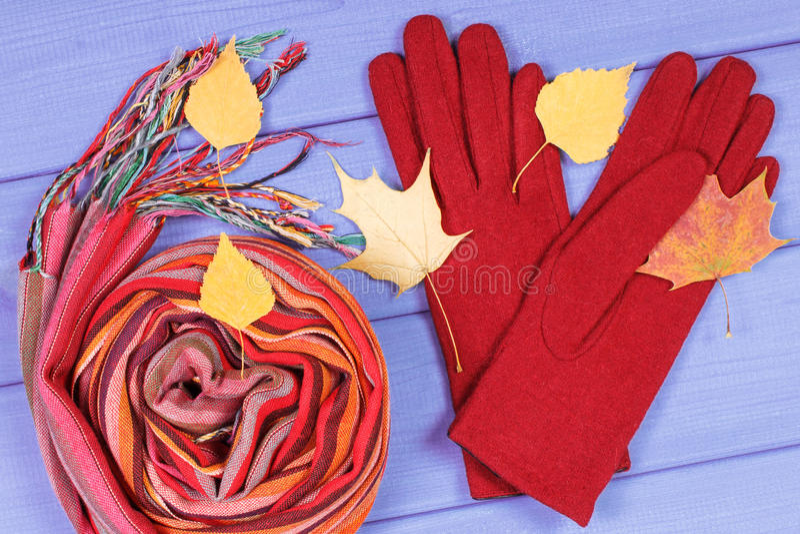Осенние листья с перчатками и шаль на женщина, womanly одежда на осень или зима стоковые изображения rf