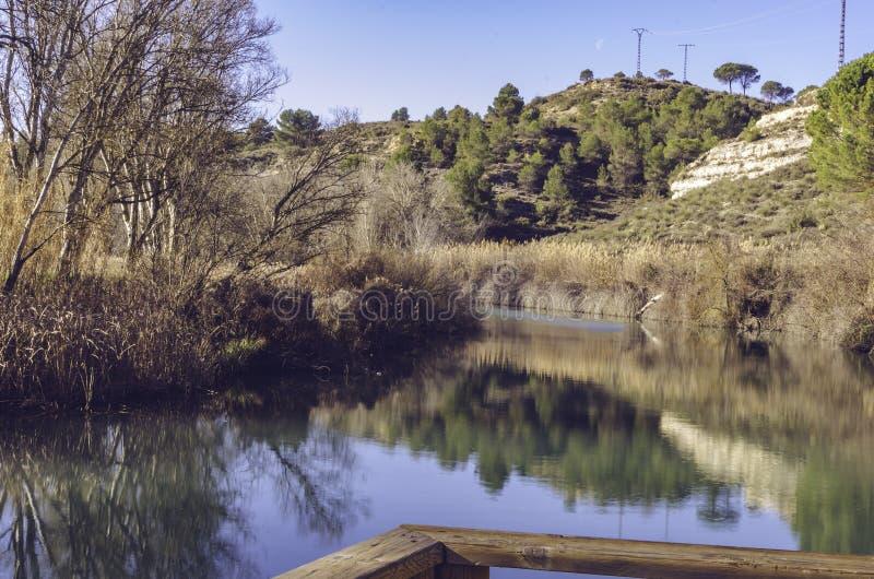 Осенние пейзажи на берегах болота стоковая фотография rf