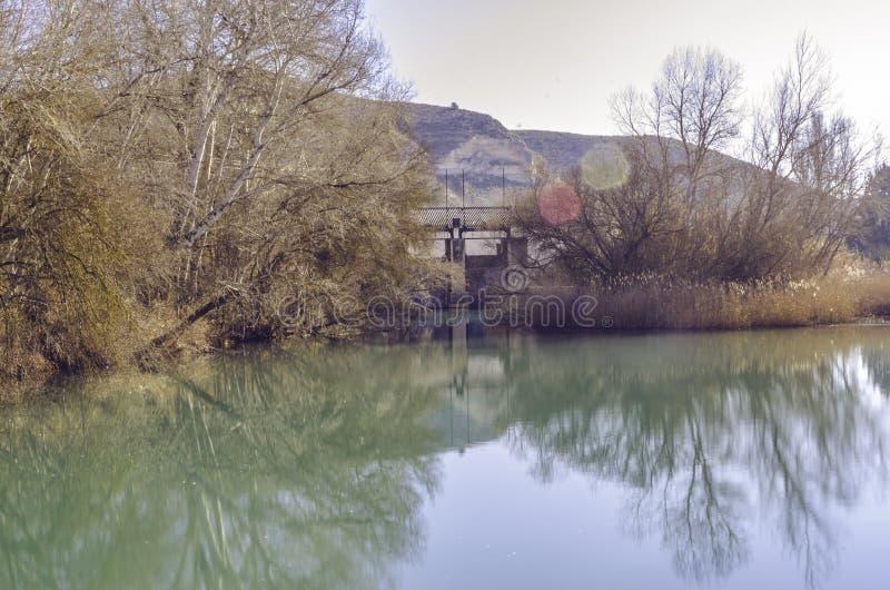 Осенние пейзажи на берегах болота стоковое изображение rf