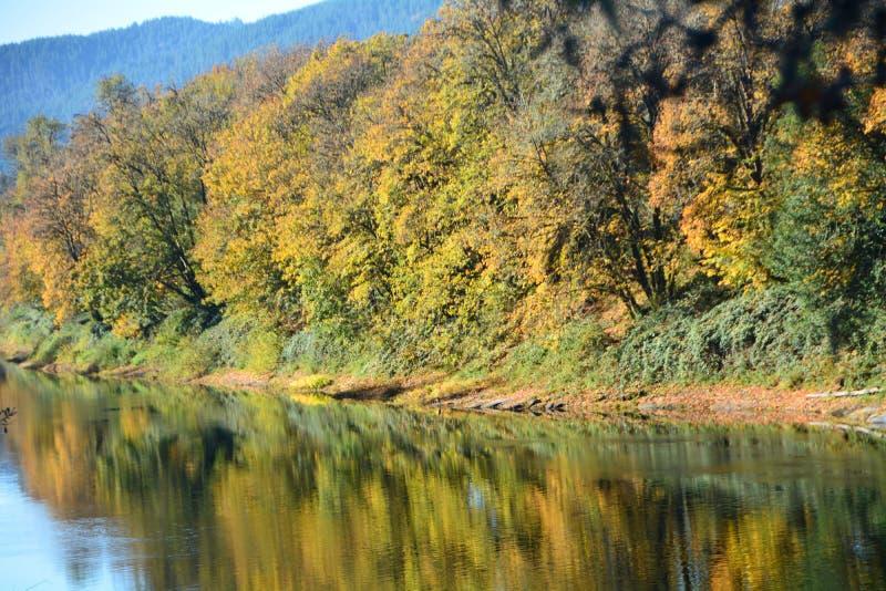 Осенние размышления в реке Орегон Умпку стоковые фото