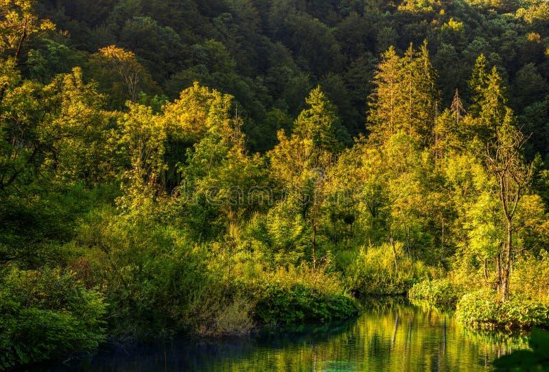 Осенний взгляд красивых водопадов в национальном парке озер Plitvice стоковое фото rf