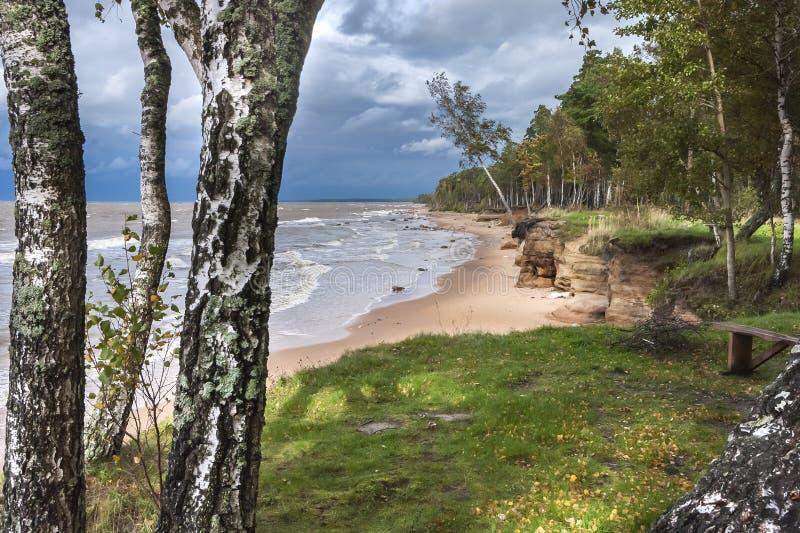 Осенний взгляд на прибалтийском пляже, Vidzeme, Латвии стоковые изображения rf