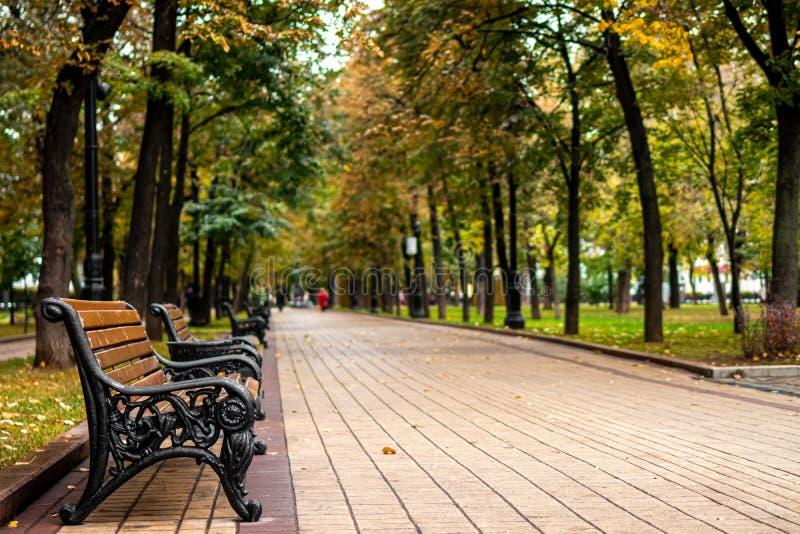 Осенний парк Фон парка Падения стоковые изображения rf