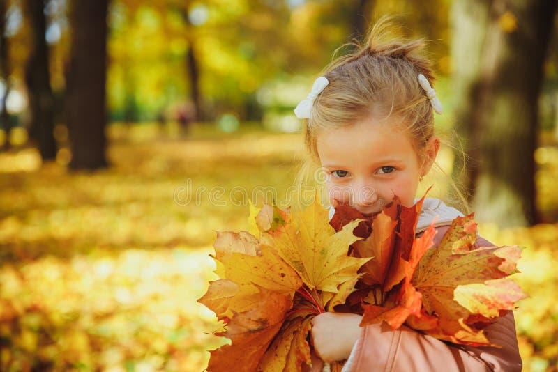 Осенний портрет милой кудряшки Маленькая забавная девушка, играющая с желтыми листьями в лесном ребенке, прогуливаясь по улице стоковое фото