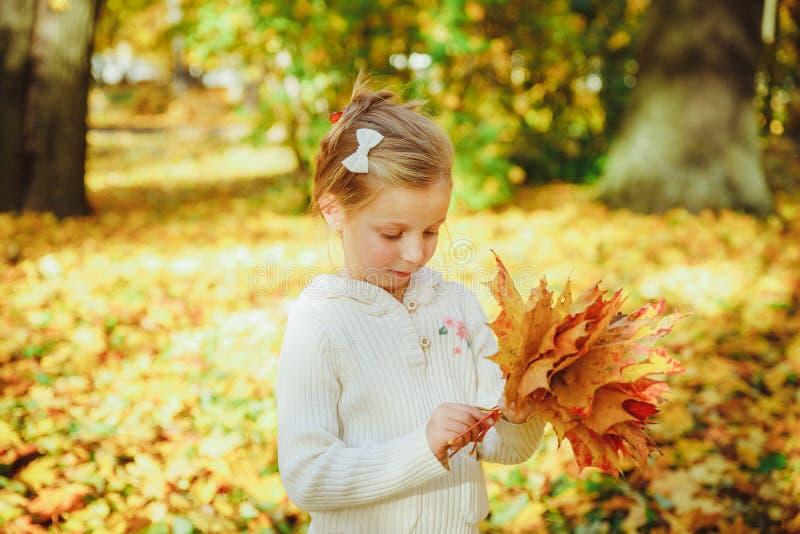 Осенний портрет милой кудряшки Маленькая забавная девушка, играющая с желтыми листьями в лесном ребенке, прогуливаясь по улице стоковое изображение