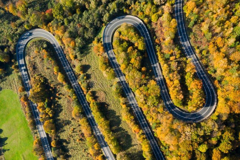 Осенняя извилистая дорога в лесу стоковые изображения rf