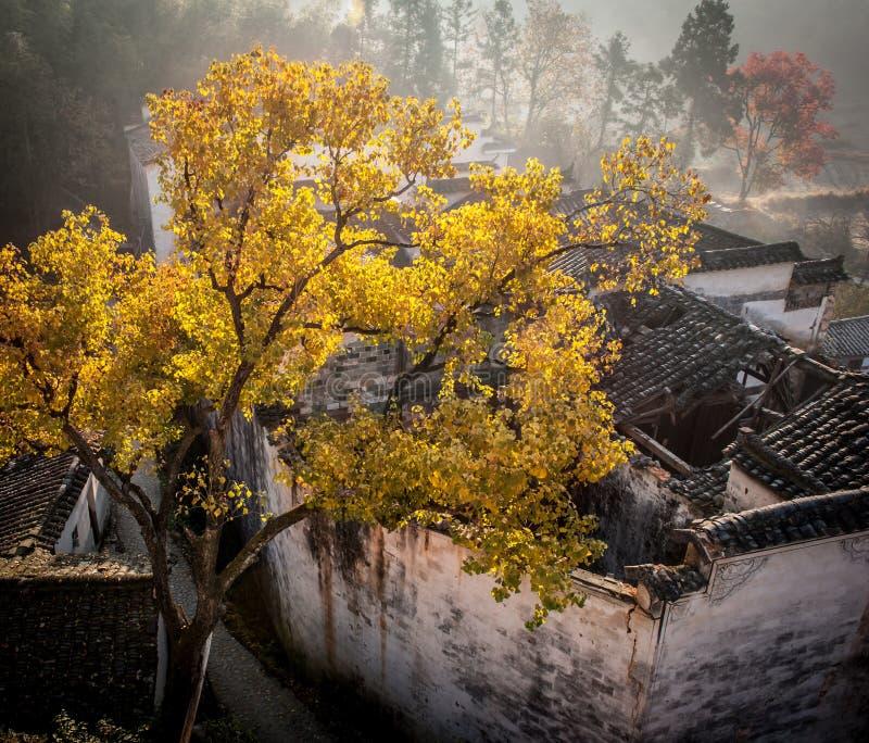 Осень Аньхоя Китая стоковая фотография rf