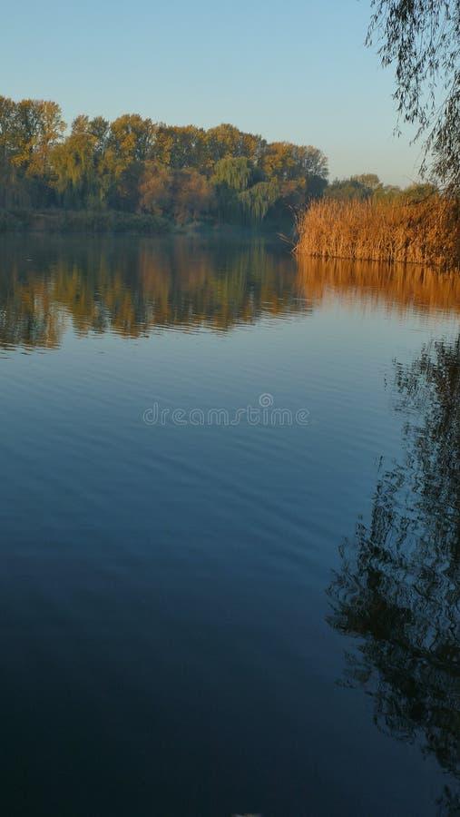 Осень водой стоковое фото rf