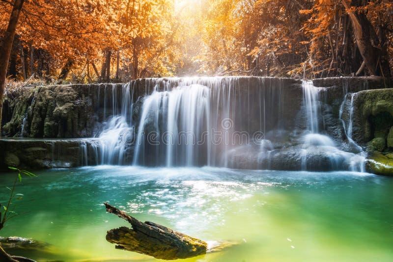 Осень водопада в тропическом лесе стоковая фотография