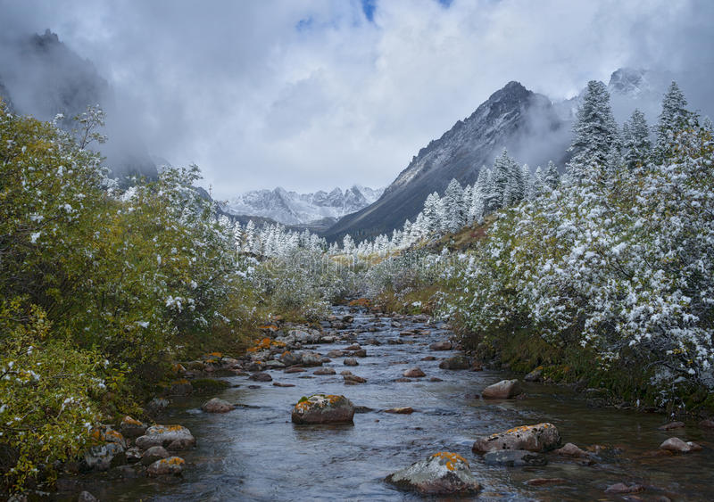 Осень в верхних достигаемостях реки Zun-handagay стоковое фото rf