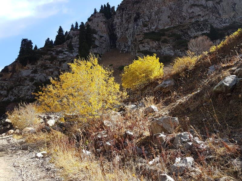 Осень в горах стоковые фотографии rf