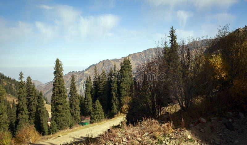 Осень в горах стоковая фотография rf