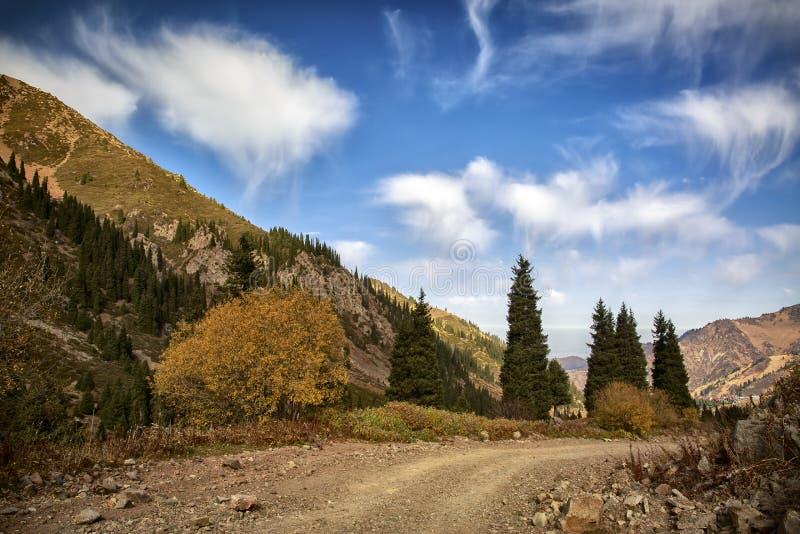 Осень в горах стоковое фото rf
