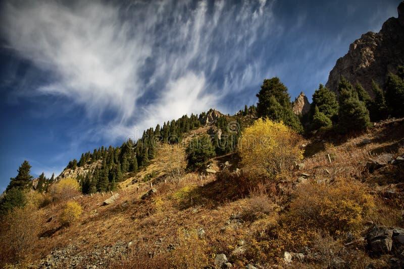 Осень в горах стоковые фото