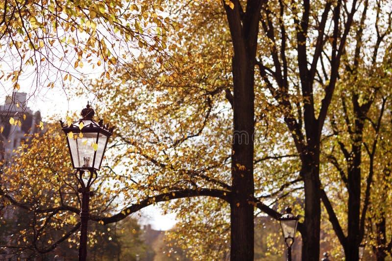 Осень в городе стоковые изображения rf