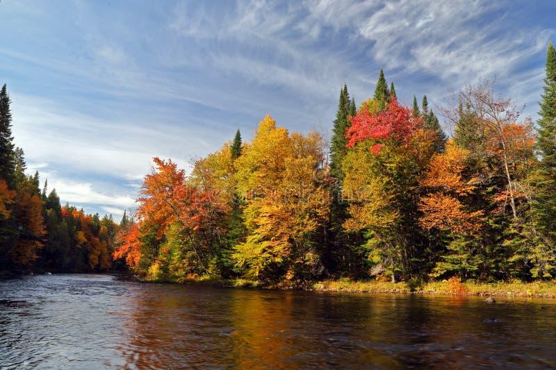 Осень в Квебеке стоковая фотография