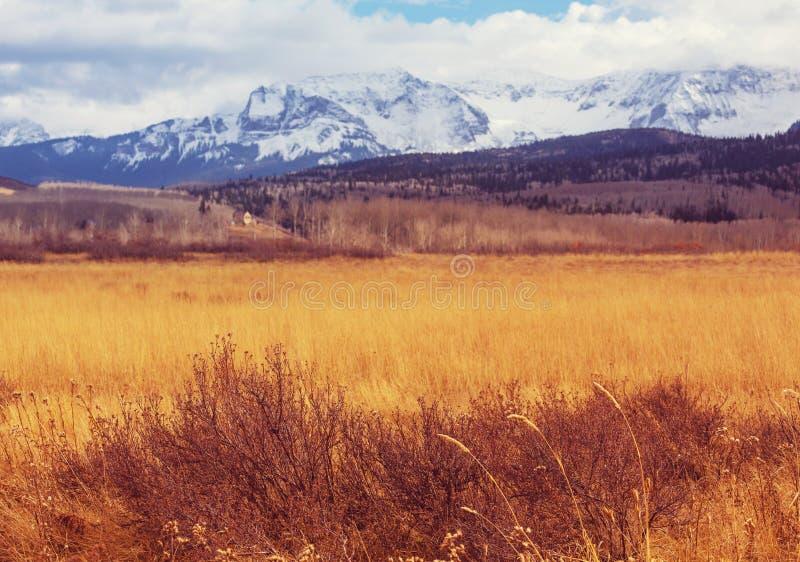 Осень в Колорадо стоковое изображение rf