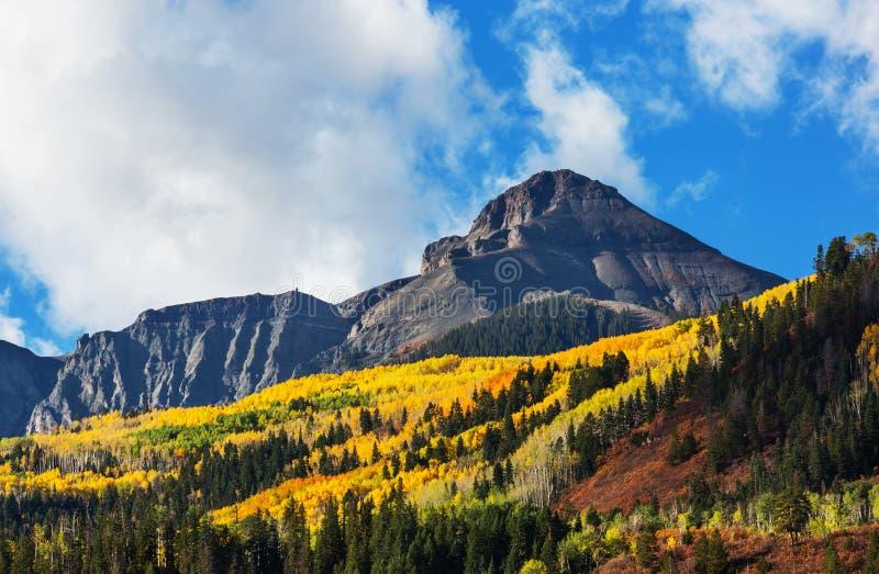Осень в Колорадо стоковые фотографии rf