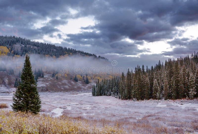 Осень в Колорадо стоковое фото rf