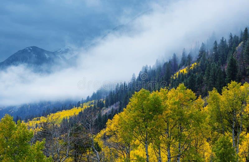 Осень в Колорадо стоковые изображения