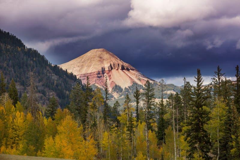 Осень в Колорадо стоковая фотография rf