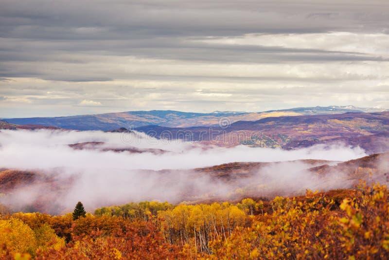 Осень в Колорадо стоковые фото