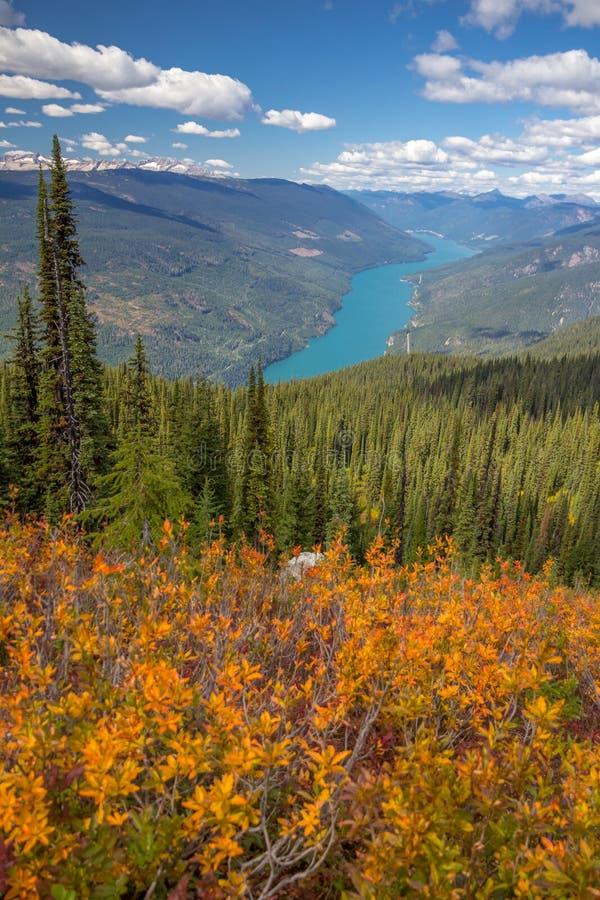 Осень в национальном парке Revelstoke держателя, Канаде След Knoll орла стоковая фотография rf