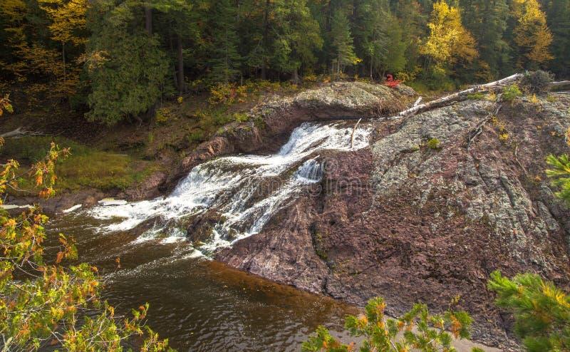 Осень в национальном лесе Оттавы стоковое изображение rf