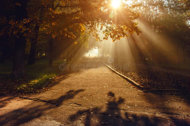 Осень в парке города Город Khmelnitsky стоковое фото