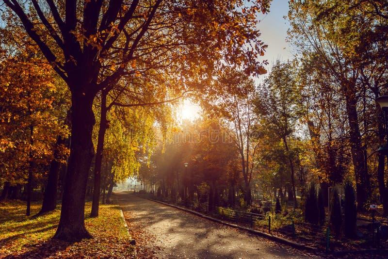 Осень в парке города Город Khmelnitsky стоковое изображение