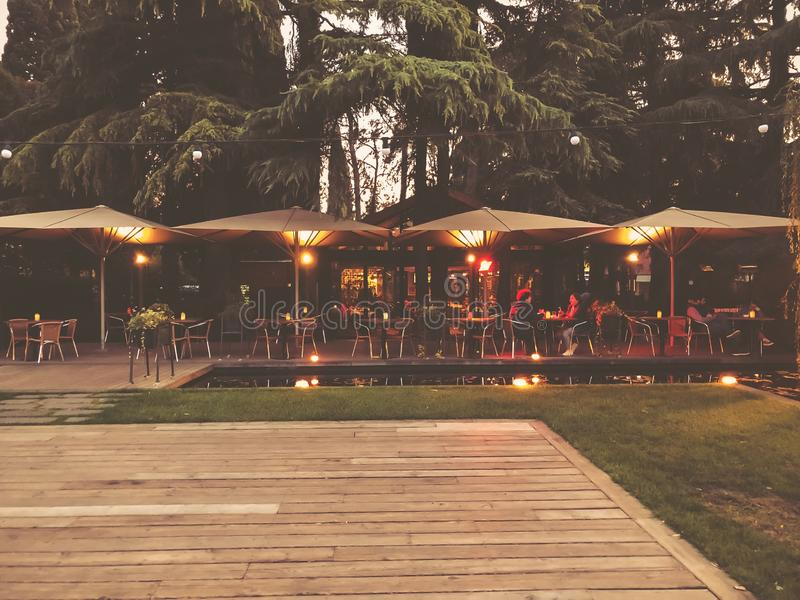 Осень в парке, деревья, тростники около пруда, кафе в парке, осенняя погода Падая листва Цветы осени стоковое изображение rf