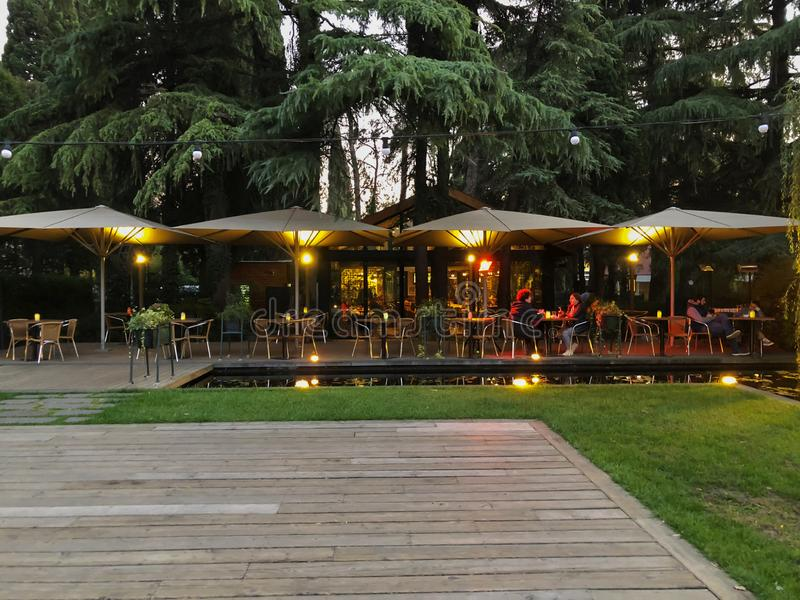 Осень в парке, деревья, тростники около пруда, кафе в парке, осенняя погода Падая листва Цветы осени стоковое изображение