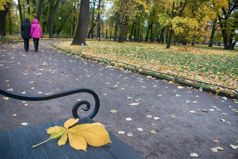 Осень в парке и на улицах стоковые изображения rf