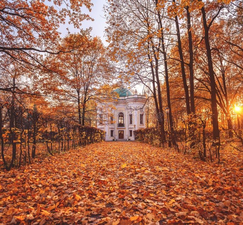 Осень в парке Поместье Kuskovo упаденные листья день осени солнечный стоковое изображение