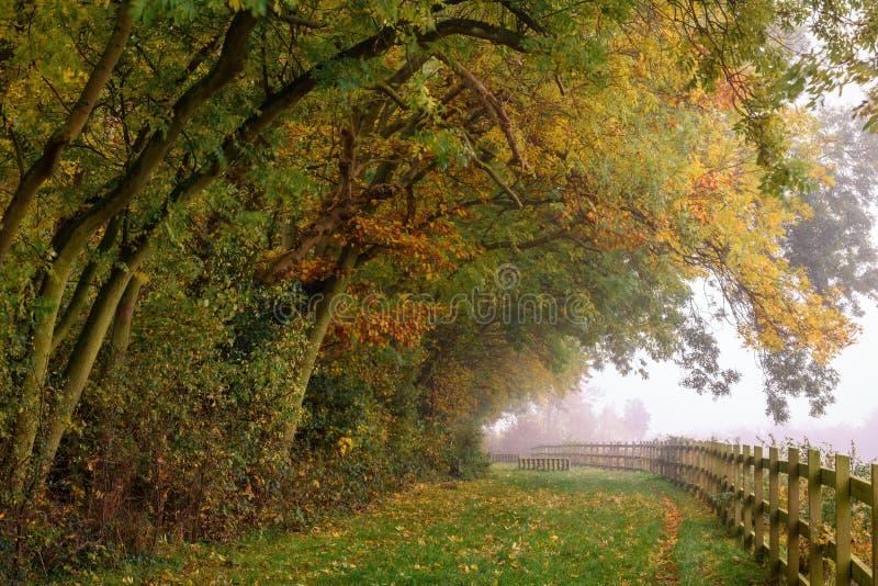 Осень в парке страны фермы замкового камня стоковые изображения rf