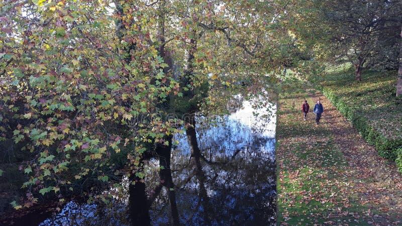 Осень в парке стоковые изображения