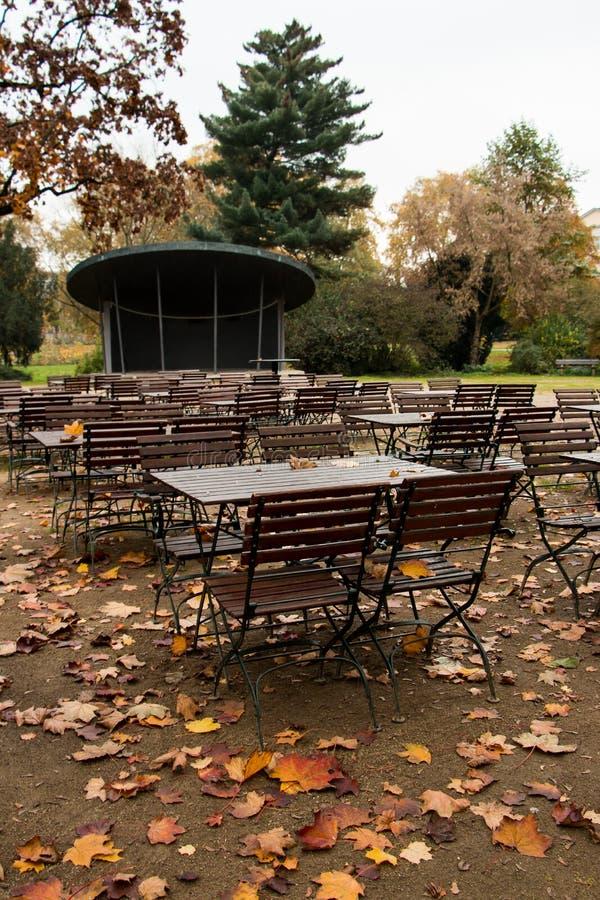 Осень в парке стоковые фото