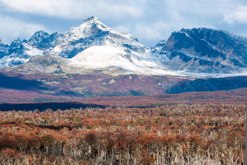 Осень в Патагонии Кордильеры Дарвин, Огненная Земля стоковые фотографии rf