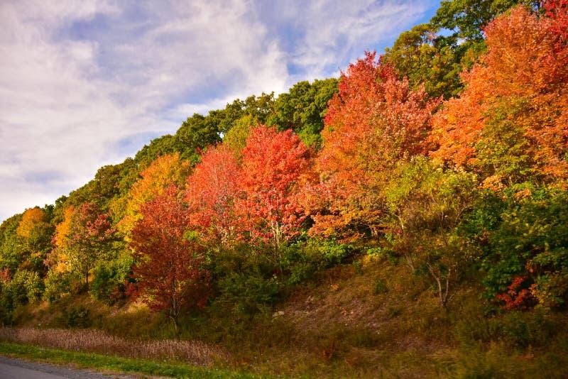 Осень в Пенсильвании, США стоковая фотография rf