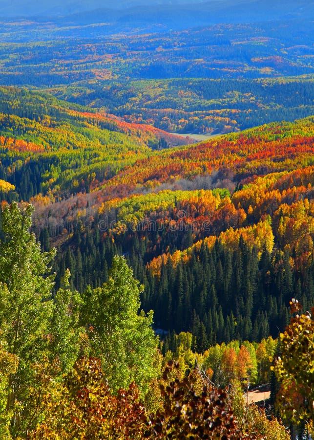Осень в пропуске Огайо, Колорадо стоковая фотография rf
