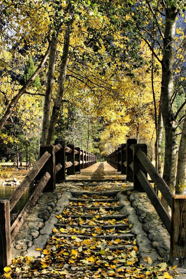 Осень в Сьерре стоковое изображение