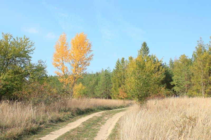 Осень в чехии стоковые изображения