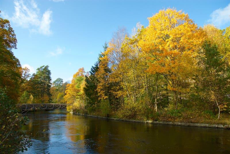 Осень в Швеции когда солнце сияющее стоковое фото