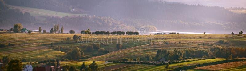 Осень в южной Польше чайка портрета вечера осени Заход солнца в сентябре в политике стоковые изображения