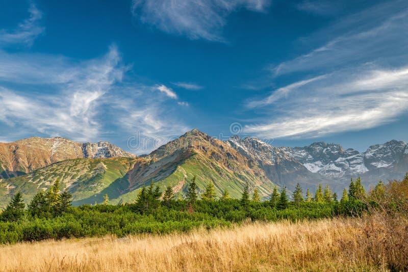 Осень в Hala Gasienicowa, горах Tatra, Польше стоковые фото