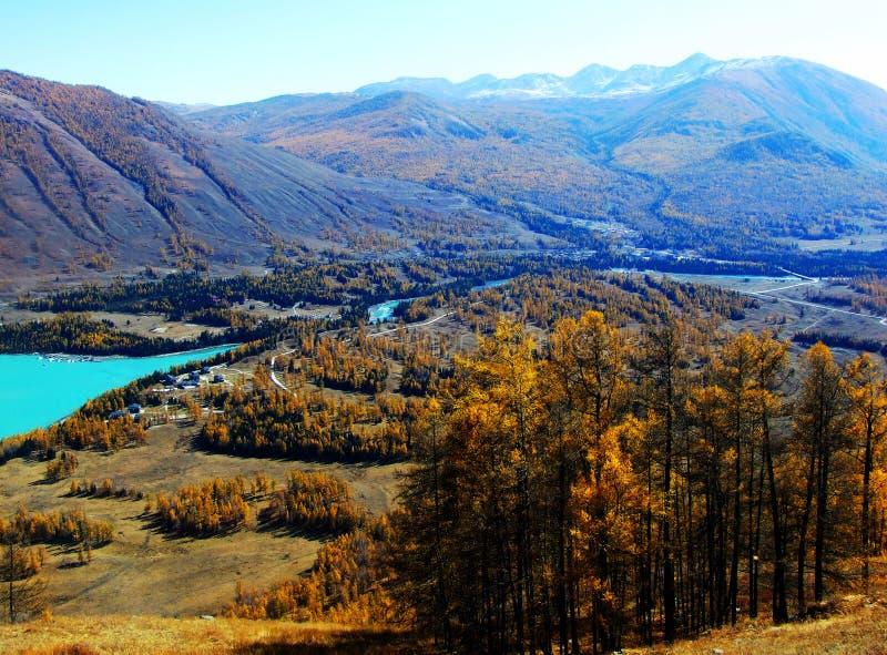 Осень в kanas озера стоковые изображения