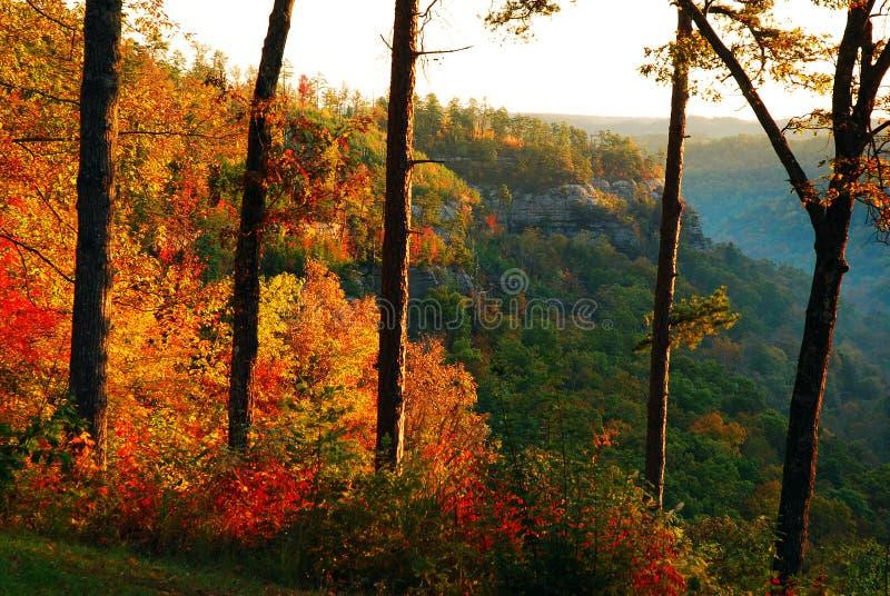 Осень в Kentucky& x27; ущелье s Red River стоковое фото rf